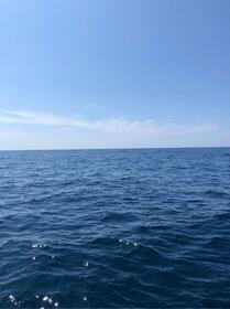 夏の海となってます!