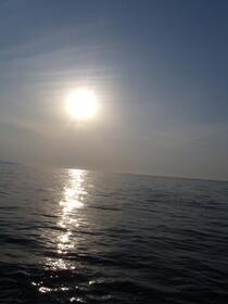 凪でオイリーな海でした!